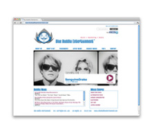 Blue Buddha Entertainment<br>Music Licensing Website